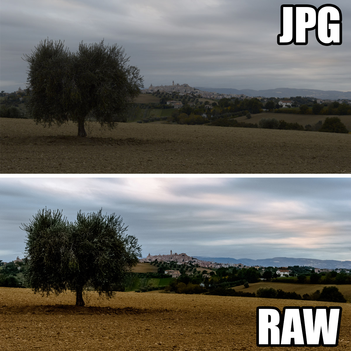 Macerata in jpg e in Raw