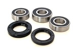 Rear Wheel Bearings and Seals Kit Kawasaki KX250 and KX500 1985