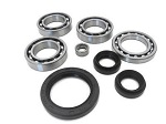 Front Differential Bearings and Seals Kit Yamaha YFM600 Grizzly 1998-2001