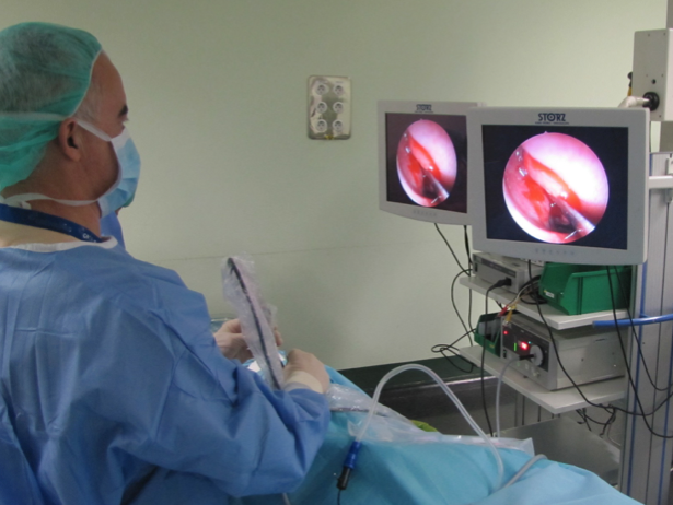 Curso de cirugía endoscópica nasosinusal básico y avanzado