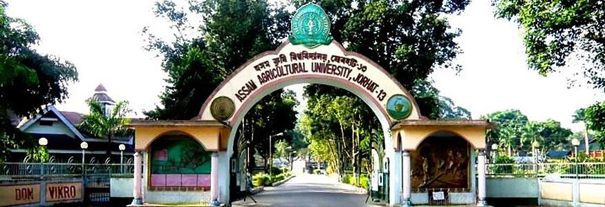 College of Community Science, Jorhat