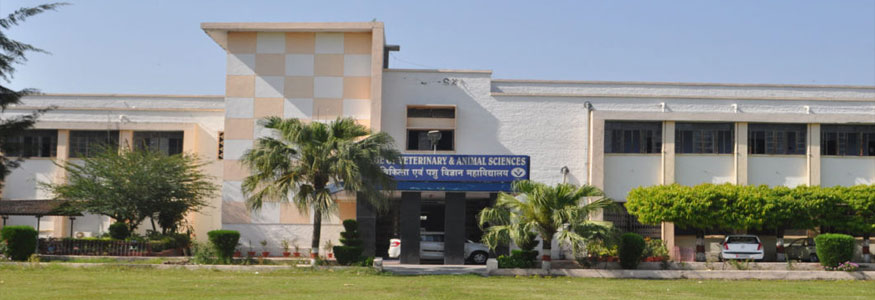 College of Veterinary and Animal Sciences, G.B. Pant University of Agriculture and Technology