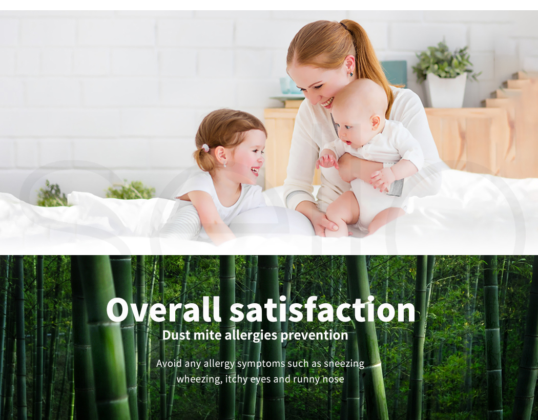DreamZ-Mattress-Protector-Topper-Bamboo-Fabric-Waterproof-Double-Queen-King-Size thumbnail 14