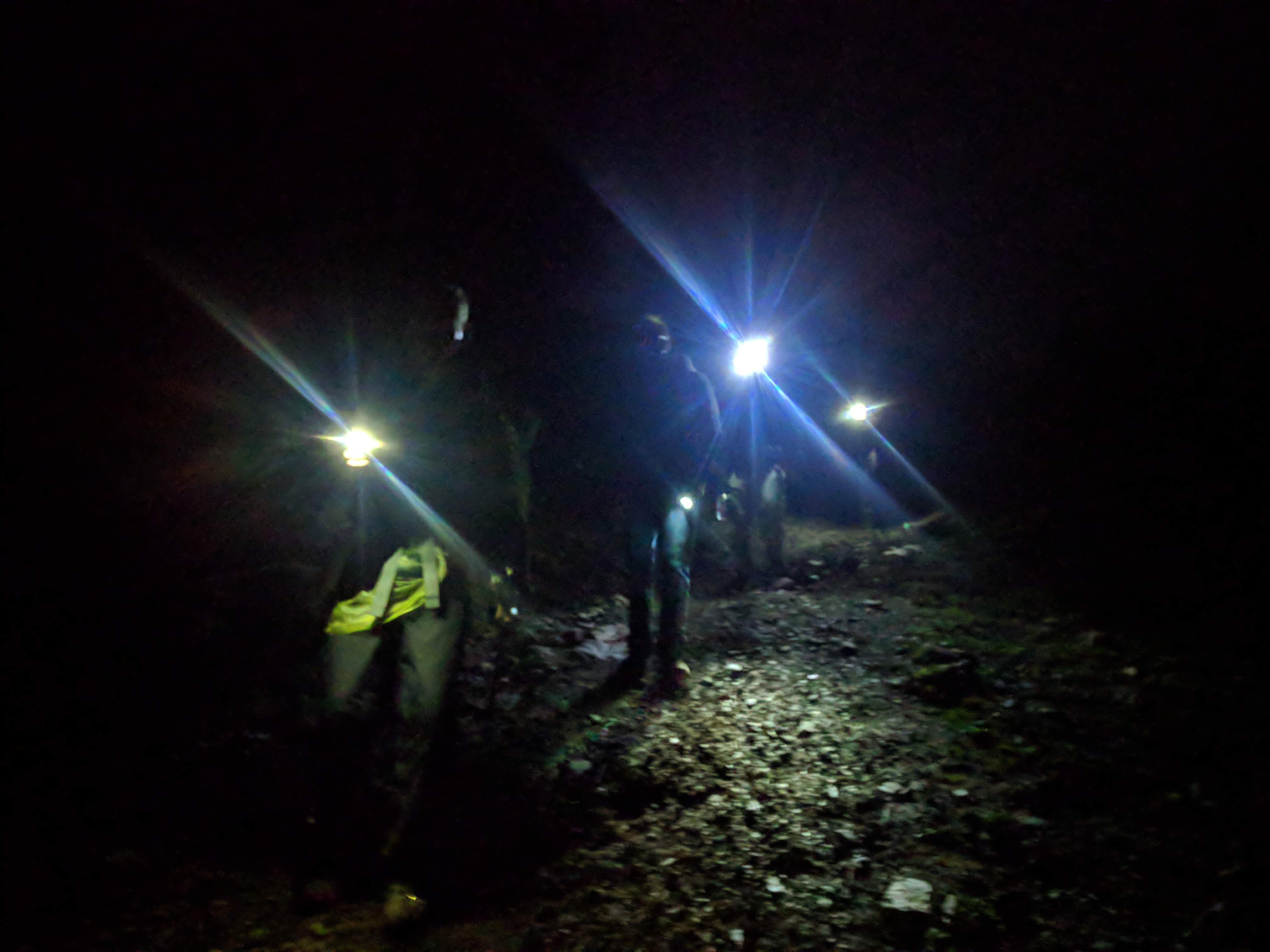 wandeling in het donker