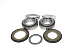 Steering Stem Bearings and Seals Kit Honda CB500T Twin 1975 1976