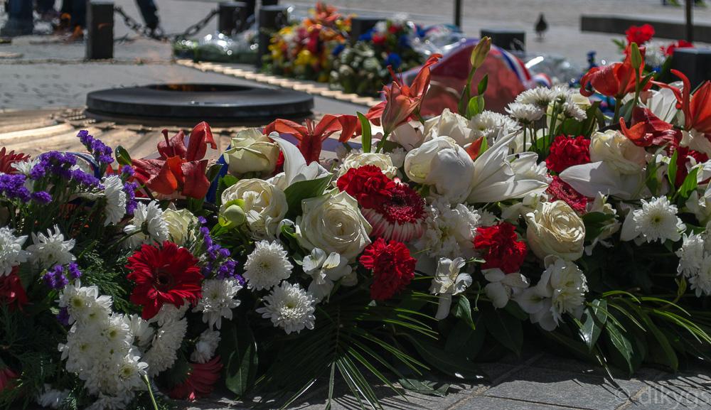 Flores para el soldado desconocido