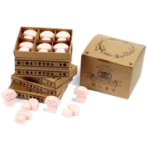 Soy wax melts in gift box - old ginger