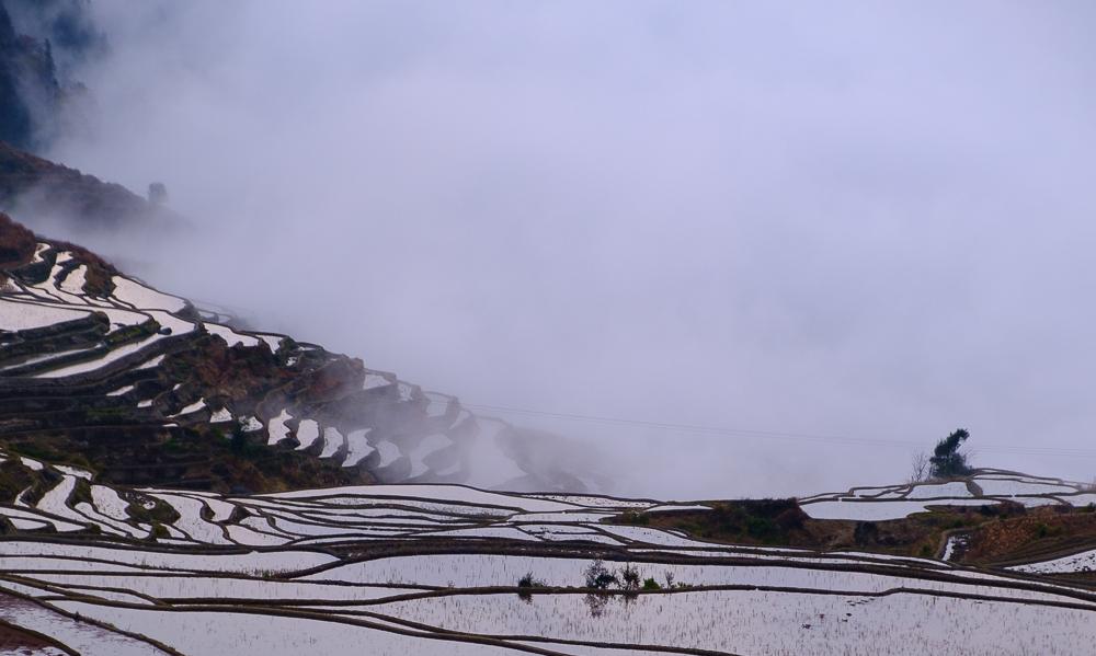 De enige echte Pugaolao rijstterrassen! Nog nooit van gehoord? Ze liggen in het uiterste zuiden van China en worden al heel lang bewerkt door de bewoners van dit en de omliggende bergdorpen. Hoe die mensen onthouden welk rijstveld van hen is, vraag het me niet.
