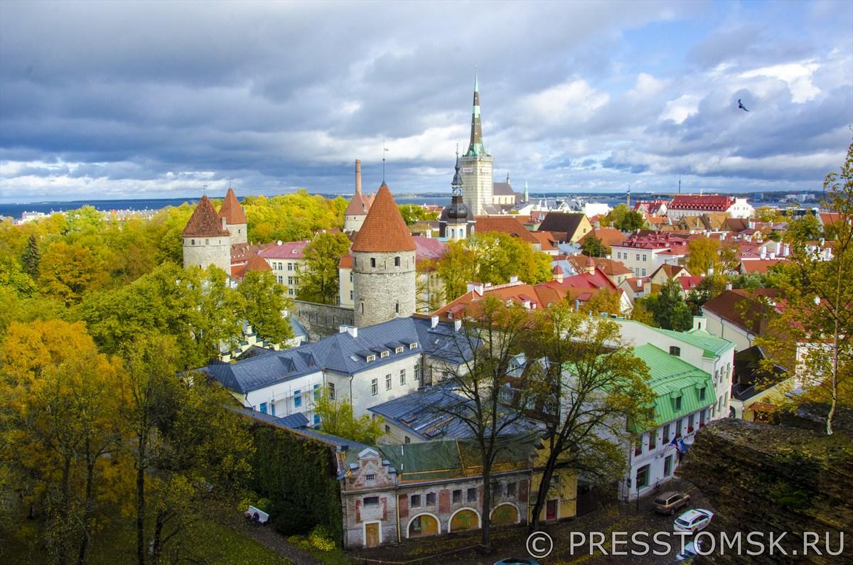 Вид на Старый город Таллина со смотровой площадки Паткули