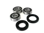 Rear Wheel Bearings and Seal Kit Yamaha TT-R250 - 25-1021B - Boss Bearing