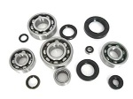 Bottom End Engine Bearings and Seals Kit Honda CR250 R Elsinore 1981