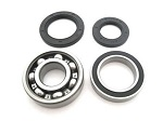 Rear Axle Bearings Seals Kit Yamaha YFB250 Timberwolf 2WD 1992 1993 1994 1995