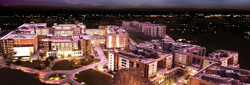 Amity University, Gurugram