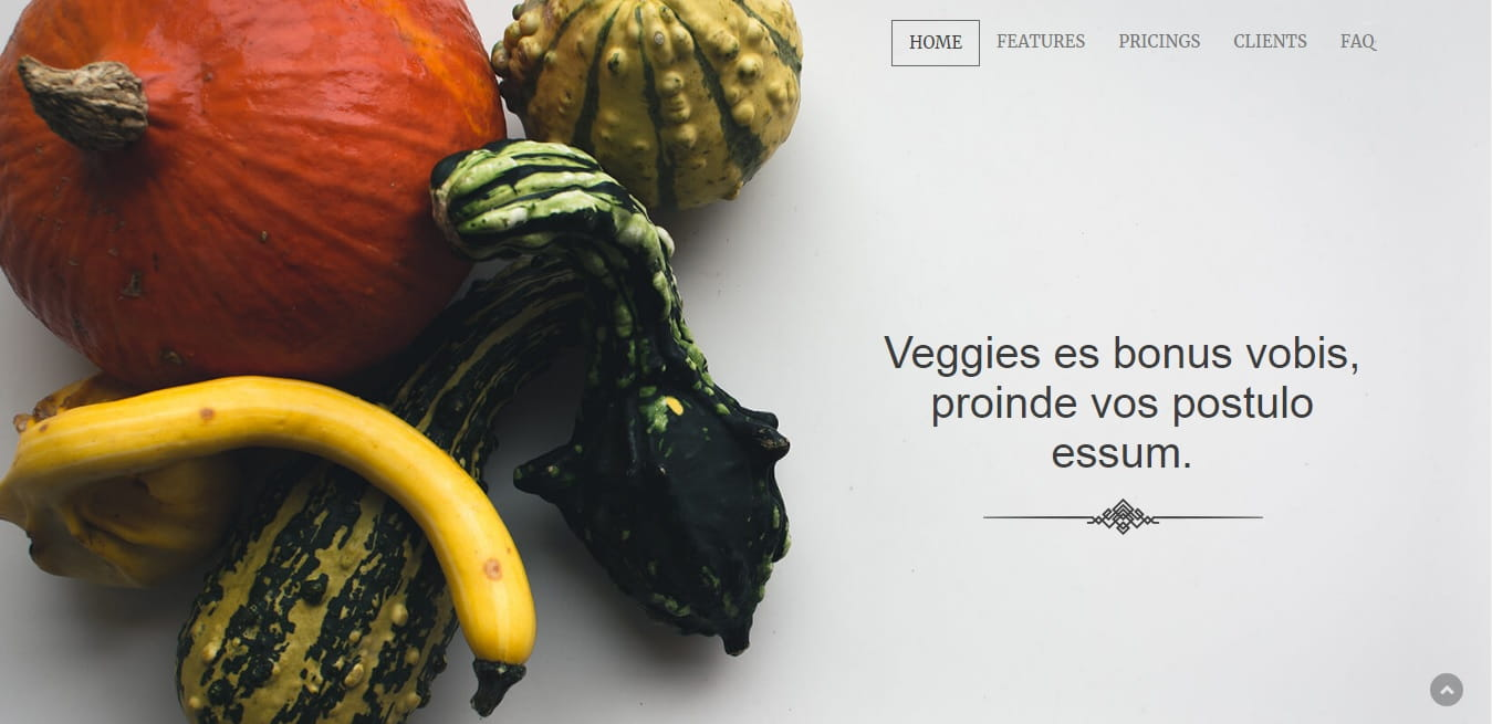 Veggi – Responsive Onepage Bootstrap Template