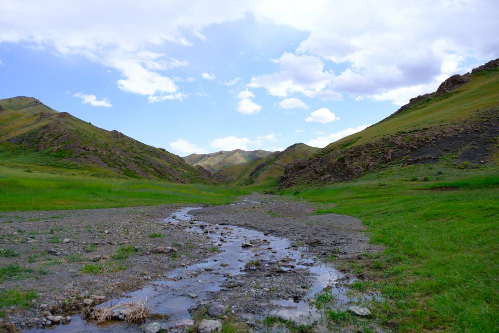 Na een nachtje in de tent glibberden we door de 'Yol Canyon' met eeuwig bevroren rivier, deden Thijs en ik onze eerste freeclimbing sessie (onverantwoord) en maakten we een flinke tocht door de grotere en zeer groene 'Dungenee Valley'. Het leek wel, hoe dichter we bij de woestijn kwamen, hoe groener het landschap!