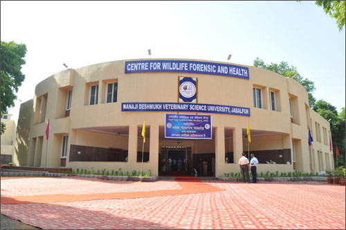 College of Veterinary and Animal Sciences, Pookot