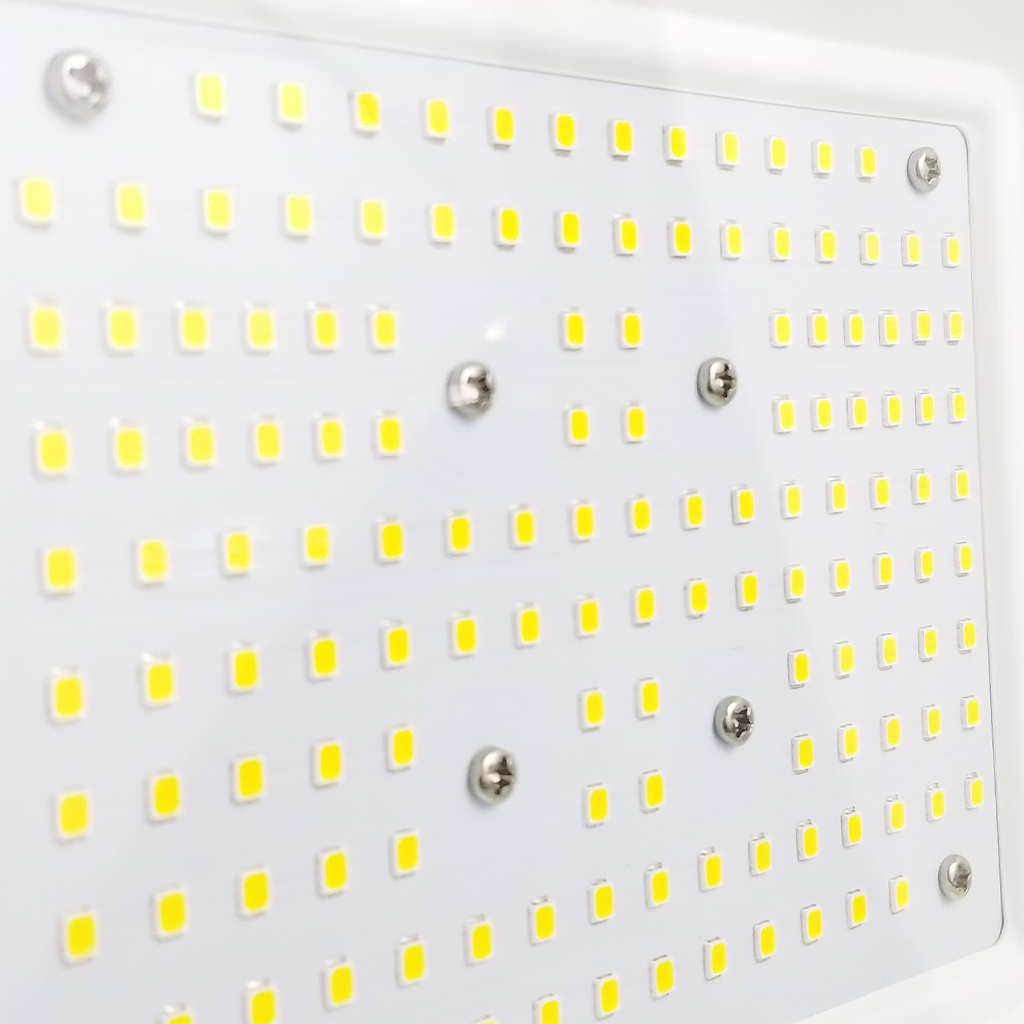 LED-Flood-Light-Gold-100w-006