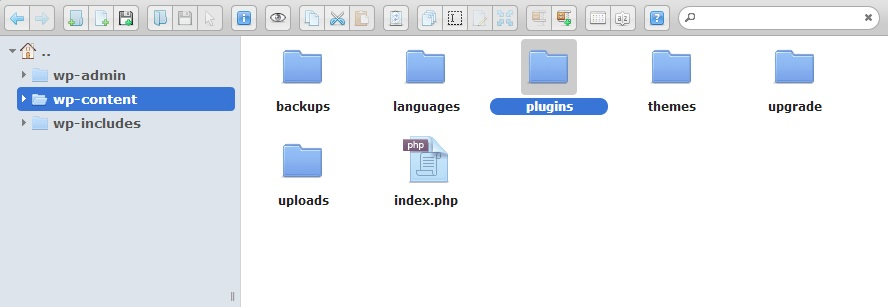 file manager on hosting