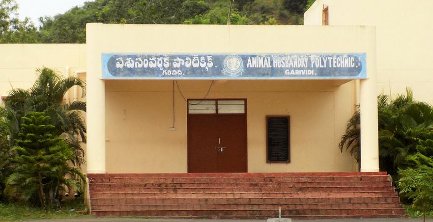 Animal Husbandry Polytechnic, Garividi