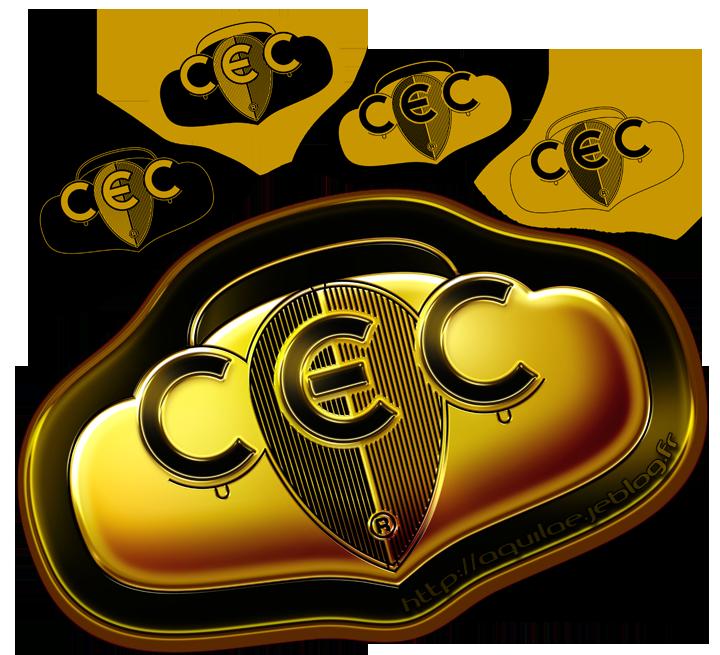 Le logo retenu et ses déclinaisons de couleurs et de matières. Cliquez pour afficher en HD