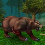 Obroprackovitý medvěd