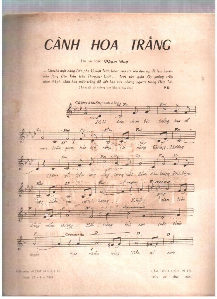 Cành Hoa Trắng - Phạm Duy