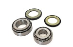 Steering Stem Bearings Seals Kit Kawasaki Ninja ZX600 1998 1999 2000 2001 2002