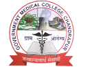 Government Medical College, Chandrapur