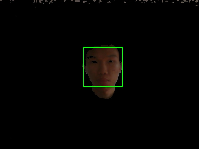 Normal with Skin Detected Image