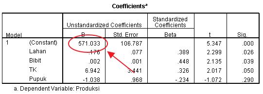 Output konstanta dalam aplikasi SPSS