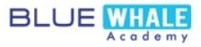 Blue Whale Academy (Travel and Tourism Institute), Andheri