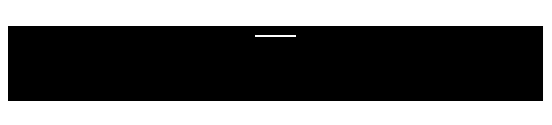NP Logo_transparent_black.png