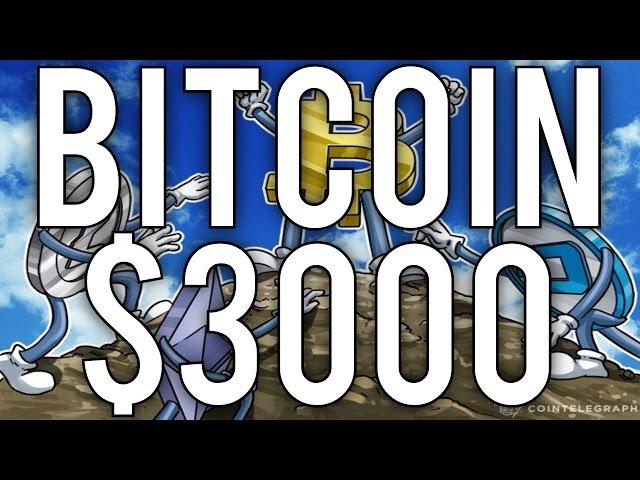 Plr Coin