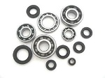 Bottom End Engine Bearings and Seals Kit Honda CR125 R Elsinore 1980-1982