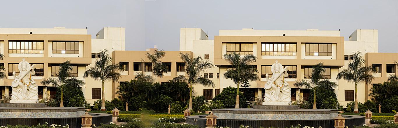 D Y Patil International University