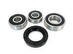Rear Wheel Bearings and Seals Kit Yamaha V-Star 1100 XVS1100  2002-2009