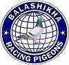 логотип Балашихинский клуб спортивного голубеводства