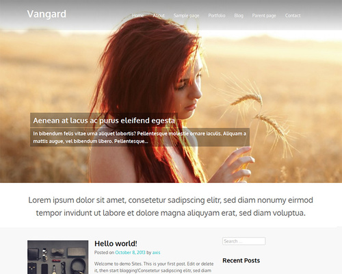 Vangard - free wordpress theme