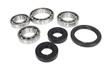 Front Differential Bearings Seals Kit Suzuki LT-F400F Eiger 4WD 2002 2003 2004