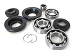 Rear Differential Bearings and Seals Kit Honda TRX650 FA Fourtrax Rincon 2003-2005