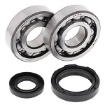Main Crank Shaft Bearings and Seals Kit YZ250 1988-1998