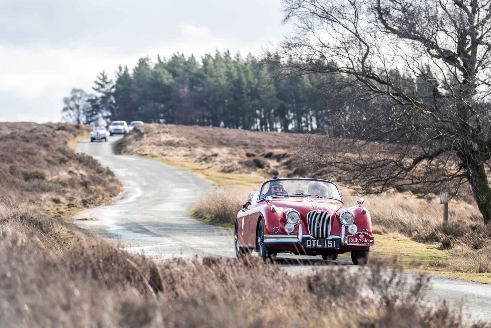 Rally the Globe is back on the road with Highland Thistle