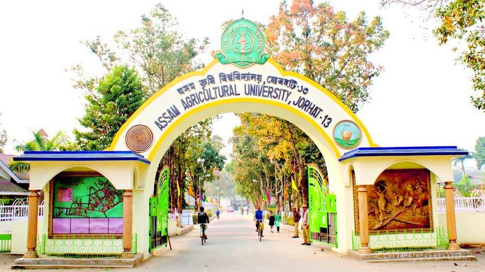 AAU (Assam Agricultural University) Image