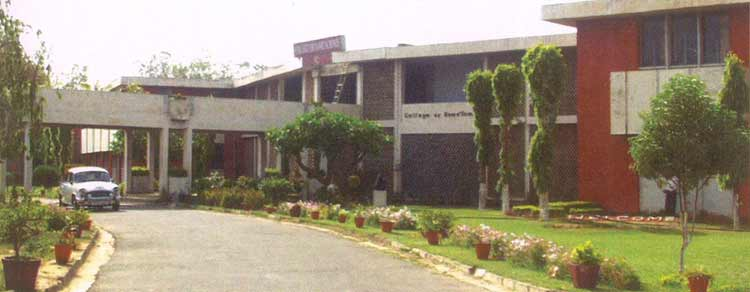 College of Horticulture and forestry, Punjab Agricultural University, Ludhiana Image