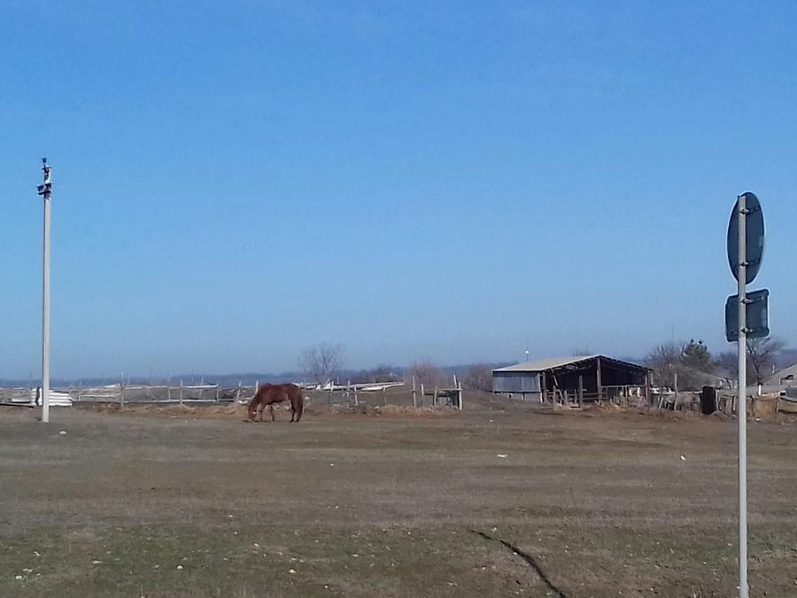 также погода грачевка ставропольский край нескольких одинаковых