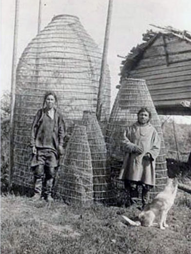 Осетровая гимга - самая большая плетеная рыболовная ловушка