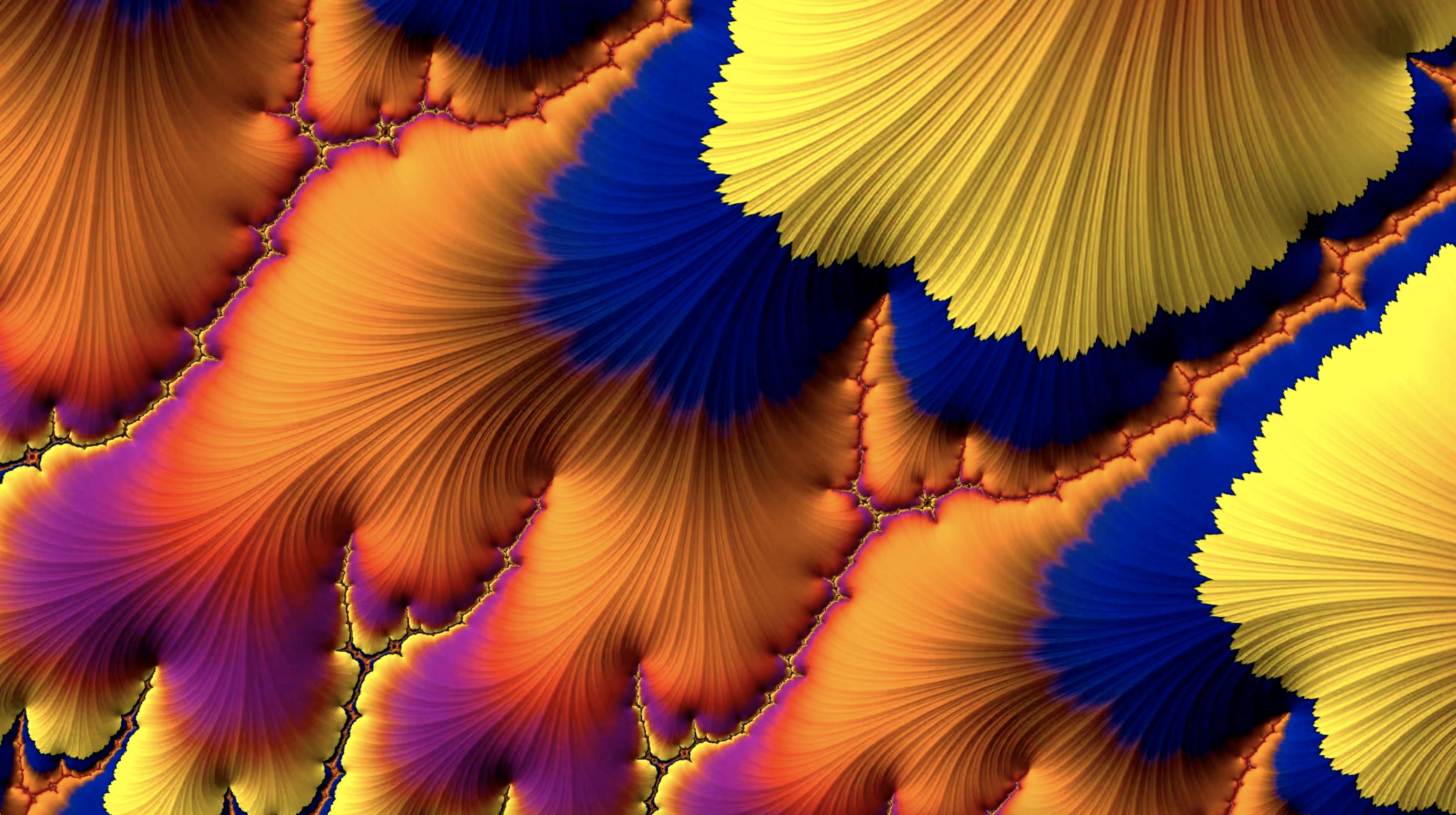 sparsity animation