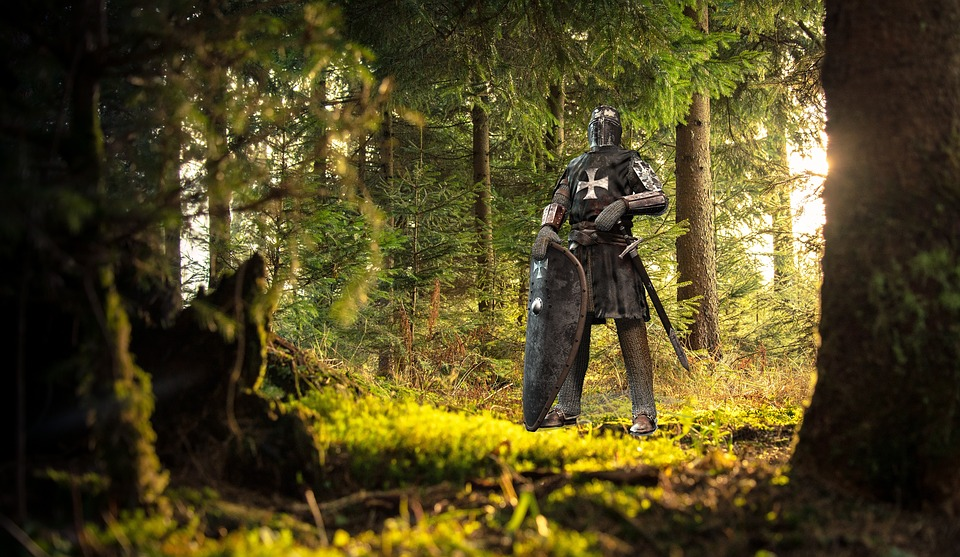 Knight in forest