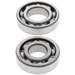 Cam Shaft Bearings Honda TRX250X 1987-1992