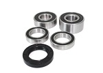 Rear Wheel Bearings and Seals Kit Honda CTX1300 2014